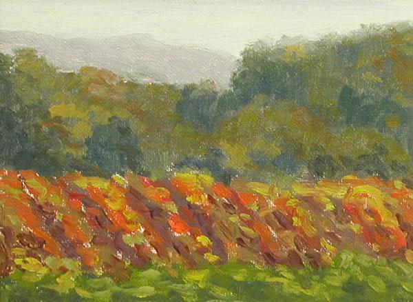 Fall Vineyards by Justina Selinger