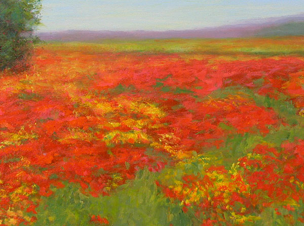 Poppies in Provence II by Justina Selinger