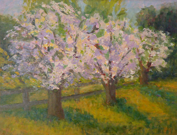 Apple Blossoms 9 x 12