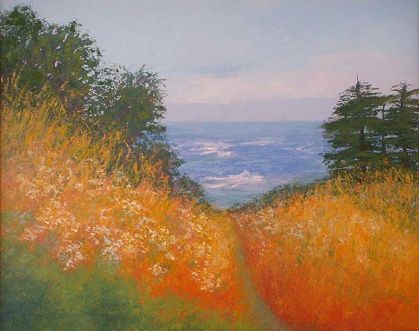 Coastal Hills   24x24